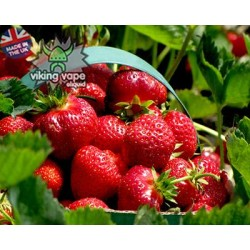 Strawberry Fields Eliquid